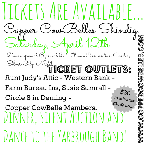 2014 Copper CowBelles Shindig - Spring Roundup!