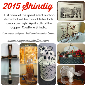 2015 Shindig Silent Auction